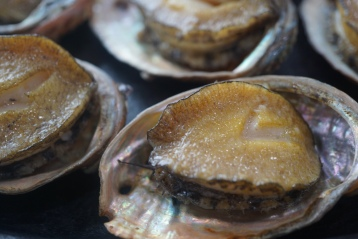 The famous Jeju abalones - 10 for about 30,000 won. Fat and succulent!