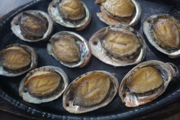 The abalone family, which was decimated happily!